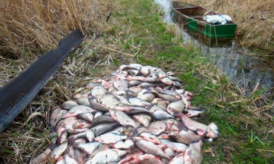 рыбалка в лещевском заказнике