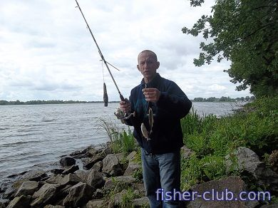 fisher-club.com: