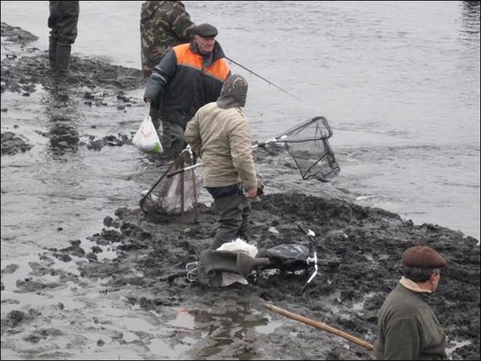 бесплатная дикая рыбалка